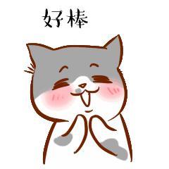 时隔9年,茂名小东江端午节再赛龙舟!你想知道的都在这里~