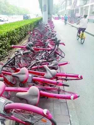 上百辆共享单车堆路边扫码打不开 市民:垃圾_科彪悍少年主题曲技